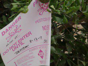 Lovett-pesticide notice-oranges